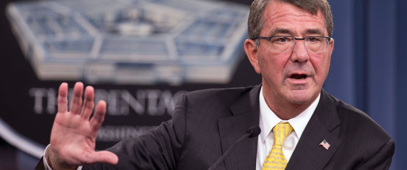 PHOTO: Defense Secretary Ash Carter speaks during a news conference at the Pentagon, Aug. 20, 2015.