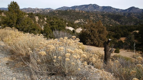 AP image of Browns Canyon