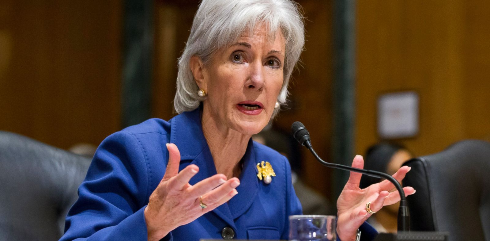 PHOTO: Health and Human Services Secretary Kathleen Sebelius testifies on Capitol Hill in Washington on Nov. 6, 2013, before the Senate Finance Committee hearing on the difficulties plaguing the implementation of the Affordable Care Act.