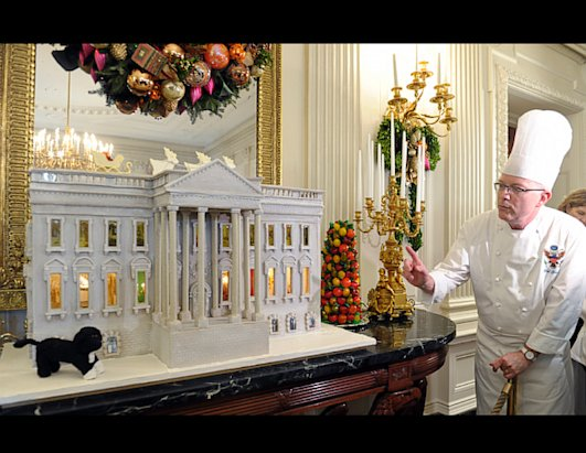 Christmas Arrives at the White House
