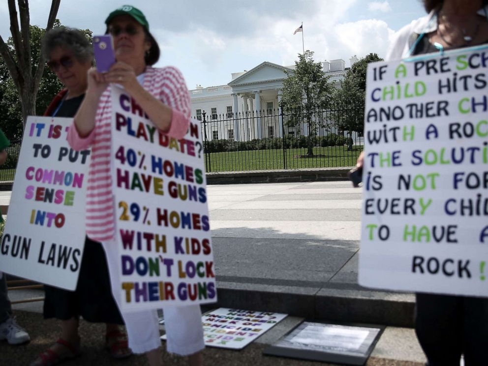 PHOTO: Linda Finkel-Talvadkar, Helen Ramsey, and Barbara Elsas, hold signs during a gun control demonstration in front of the White House, June 17, 2013.