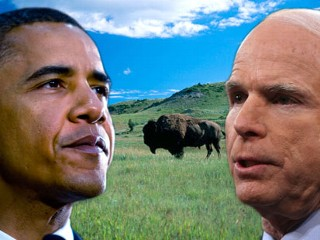 Pic image graphic of Sen. Barack Obama and John McCain over a scenic backdrop of North Dakota, with buffalo roaming in the Badlands.