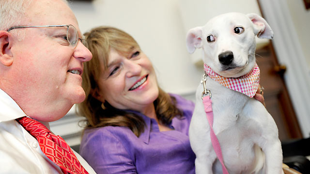 "PHOTO: Rep. Jim Sensenbrenner and his wife Cheryl sit with ""Tinker"" a female Dalmatian mix in his office in Washington, DC, May 25, 2010."