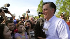 "PHOTO: Mitt Romney holds a small dog handed over by a supporter after speaking at a ""Florida housing event"" in Lehigh, Florida."