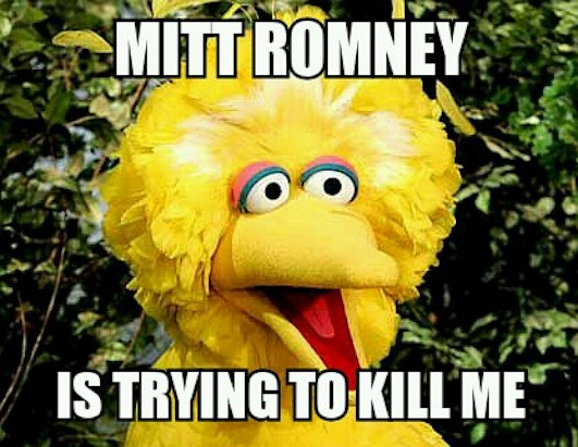Big Bird Memes Go Viral 