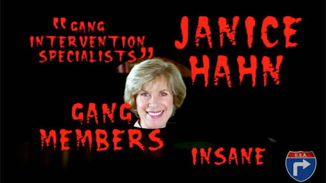 PHOTO: A controversial web ad in Southern Californias special congressional election has been denounced by both Democrat Janice Hahn and Republican Craig Huey.