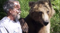 Grizzly with paw on Charlie's shoulder