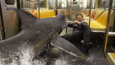 "PHOTO: Ian Ziering, as Fin Shepard battles a shark on a New York City subway in a scene from ""Sharknado 2."
