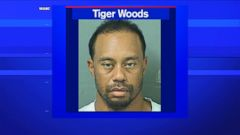 Tiger Woods has been charged with driving under the influence in Jupiter, Florida, according to local ABC affiliate WPBF.