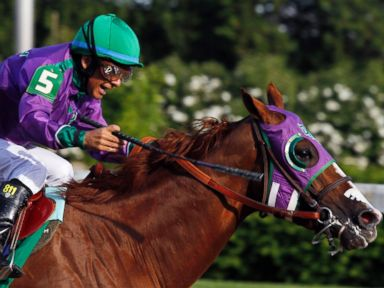 Will California Chrome Skip the Belmont?