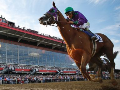 Opossum Challenges California Chrome