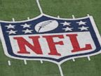 PHOTO: A detail of the official National Football League NFL logo is seen painted on the turf at MetLife Stadium on Jan. 8, 2012 in East Rutherford, N.J.
