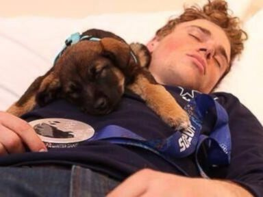 Puppy Adopted by Olympic Skier in Sochi Dies