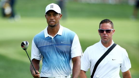 Tiger/Foley