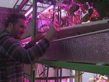 Watch:  How This Food Computer Will Allow Anyone to Be a Farmer