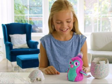 Customers Report Defects With Hatchimals