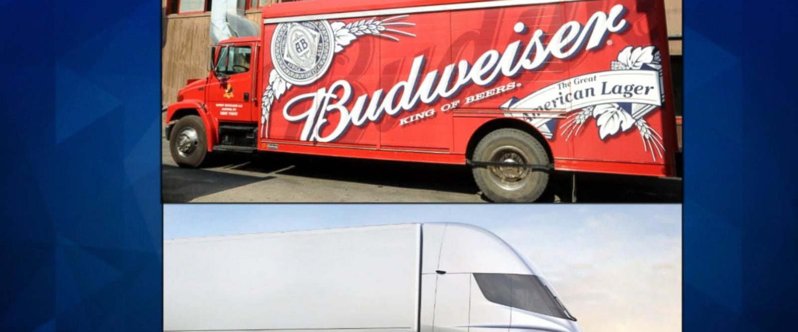 VIDEO: Anheuser Busch purchases Tesla's self-driving semi-trucks