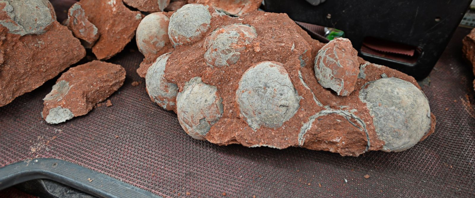 PHOTO: Fossilized dinosaur eggs were discovered during roadwork in Heyuan City, China on April 19, 2015.