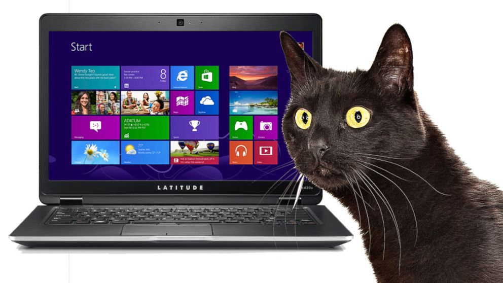 PHOTO: Users have complained that Dells Latitude 6430u laptop smells like cat urine.