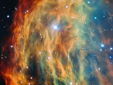 Medusa Nebula Glows in Space