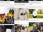 PHOTO: muzio, app, muzes