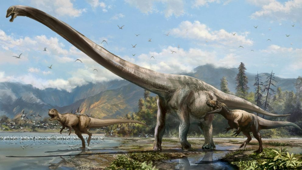 PHOTO: A newly-discovered dinosaur species in China has a neck that spans half of its body.