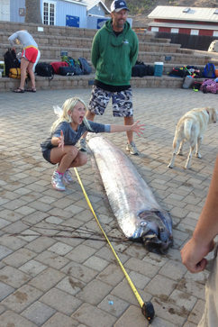 HT oarfish measured nt 131015 vblog Monster Oarfish, 18 Feet Long, Called Discovery of a Lifetime