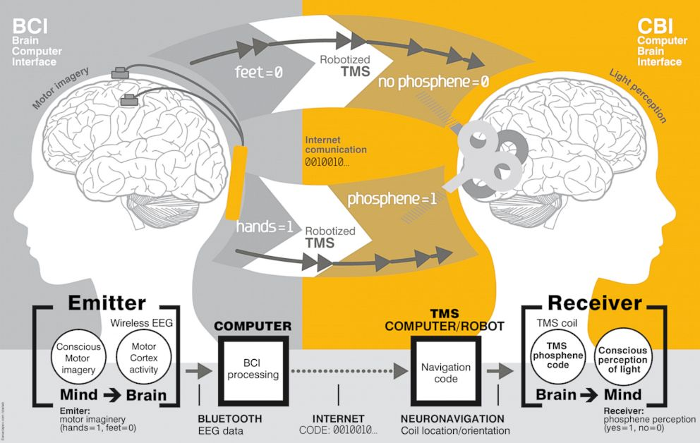 PHOTO: Scientists have succeeded in transmitting thoughts from one brain to another.