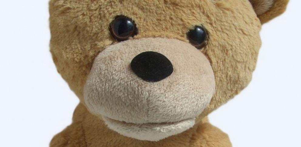 PHOTO: Supertoy Teddy