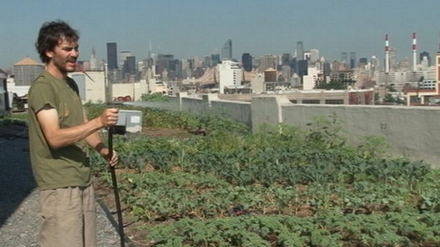 "VIDEO: ""Brooklyn Grange"" in Queens, N.Y., is a 40,000-square-foot rooftop farm."