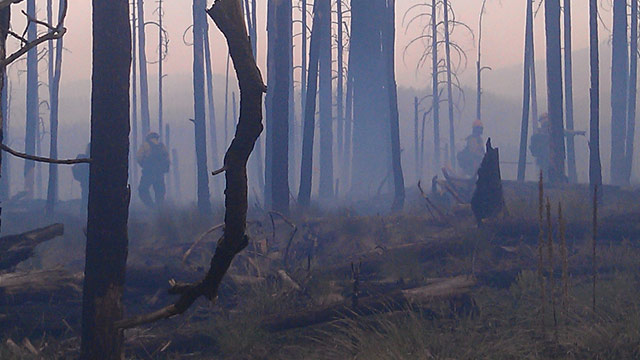 PHOTO: Gila National Forest burnout