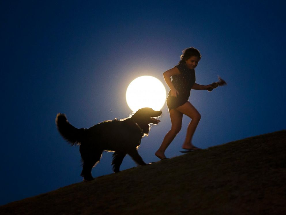 PHOTO: A girl plays with a dog as a perigee moon, also known as a supermoon, rises in Madrid, Aug. 10, 2014.