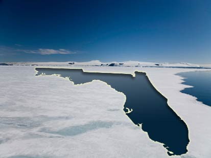Arctic Ice Florida