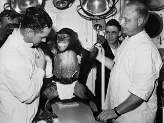 Photos: Chimps in Space: America's Early Explorers