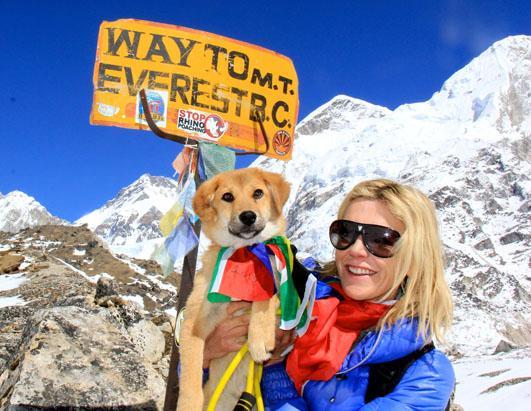 Dog Climbs Mt. Everest