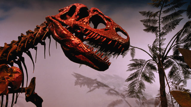 PHOTO: A dinosaur skeleton at Royal Ontario Museum is seen in this undated photo, new evidence has suggested that dinosaurs may have been wiped out by an asteroid hitting Earth.