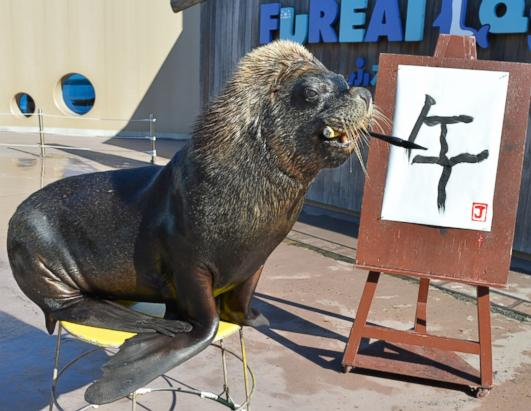 Sea Lion Paints Way Into Chinese New Year