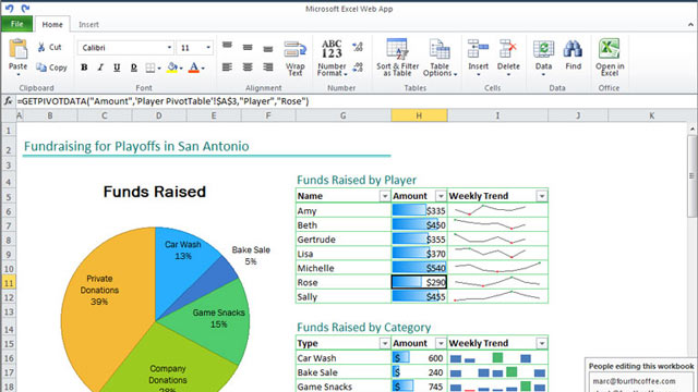 PHOTO: An Excel spreadsheet in Office Web Apps, which lets users review and edit documents within a web browser.