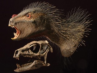 Tiny Dino With Fangs ID'ed 30 Years After Discovery