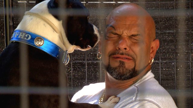 "PHOTO: Marvin Cruz underwent exposure therapy to get over his fear of pit bulls on Animal Planets TV series, ""My Extreme Animal Phobia."""