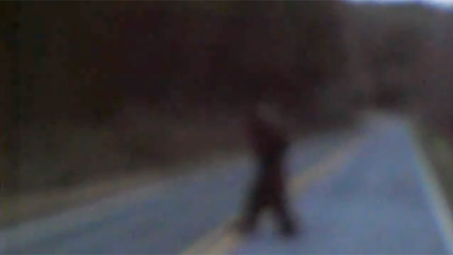 PHOTO Thomas Byers, of Shelby, N.C., posted a five-second video of what he says is the mythical Sasquatch crossing a local road.