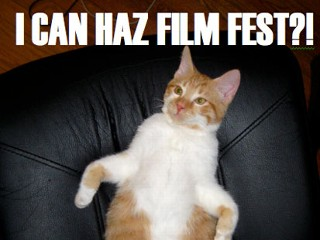 Festival Celebrates Internet Cat Videos