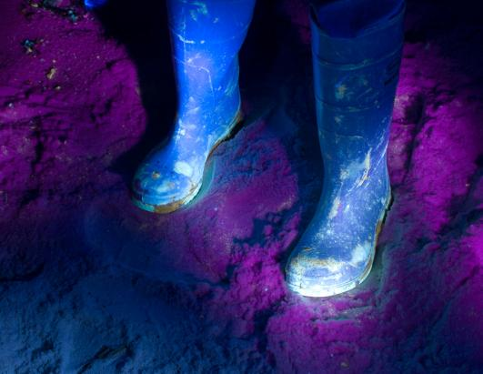 Glowing Oil: Gulf Spill Under Ultraviolet Light