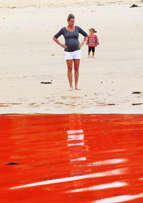 Red Tide Closes Australian Beach