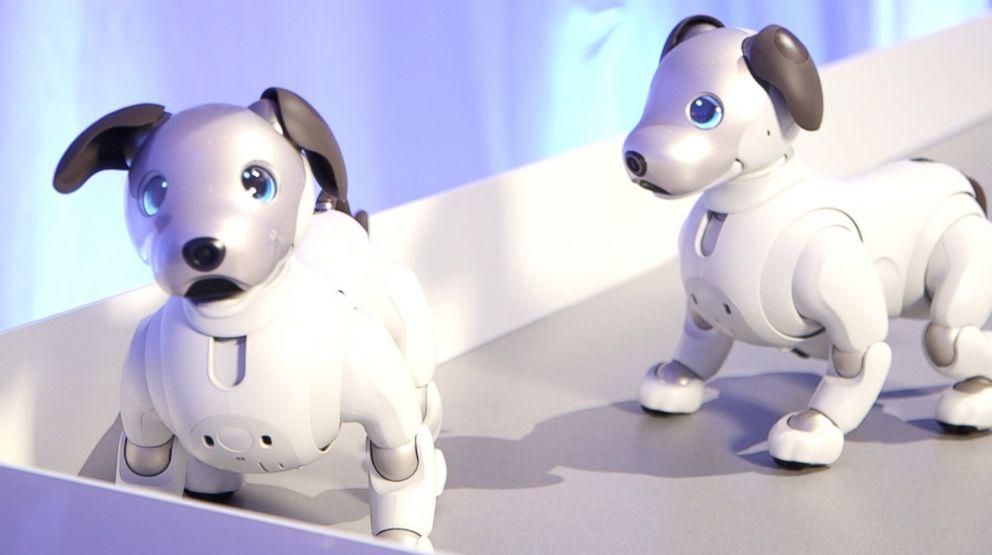 PHOTO: Sony unveiled Monday the new aibo autonomous entertainment robot dog.