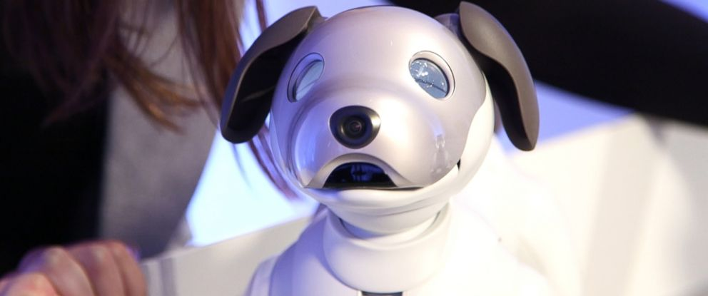 "PHOTO: Sony unveiled Monday the new ""aibo"" autonomous entertainment robot dog."