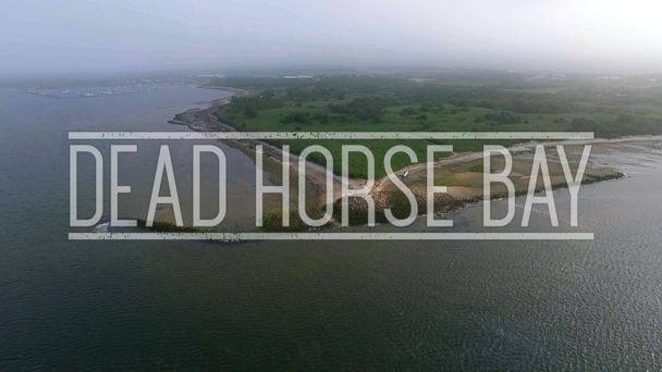VIDEO: Dead Horse Bay