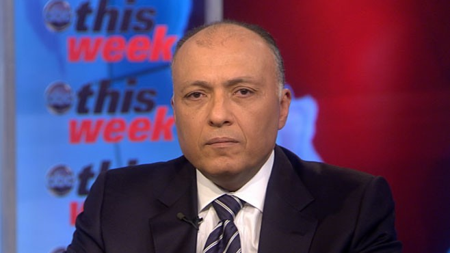 VIDEO: Egypt's Vice President Omar Suleiman on 'This Week'