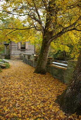 Readers Submit Their Fall Foliage Photos