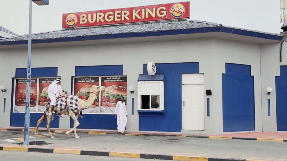 Staff at the fast food chain in Doha, Qatar were stunned when stand up comedian Hamad Al Marri rode up to the service window on the back of a camel and ordered a cheeseburger.